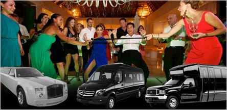 Bachelor Party Limo Party Bus Service Napa