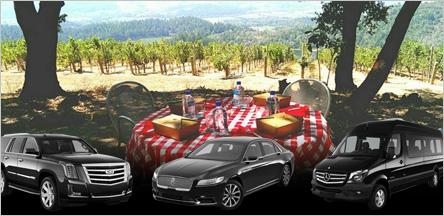 Napa Valley Wine Tours Limo Service