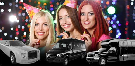 Rent Limo Party Bus For Birthday Parties In Napa